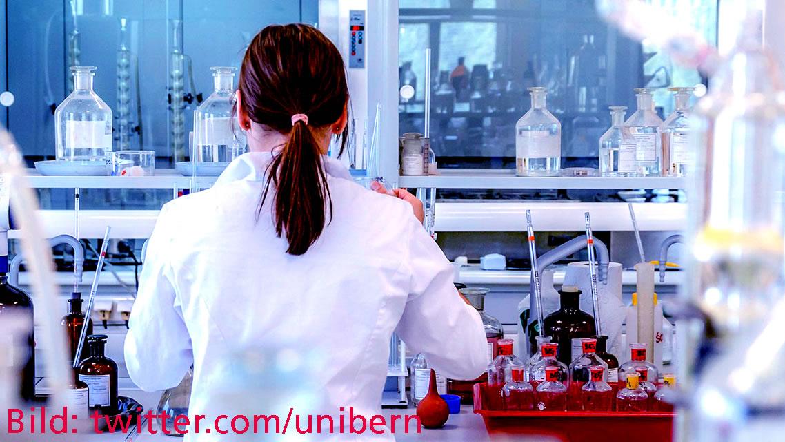 Lehre im Format der Forschung